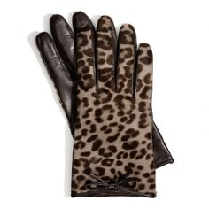 The Ocelot Haircalf Bow Glove from Coach