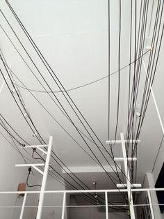 Densen/Plus α | Eiji Sumi