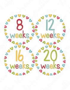 Pregnancy Baby Bump Stickers  Nora  Bright by LittleBabyBumblebee, $9.00