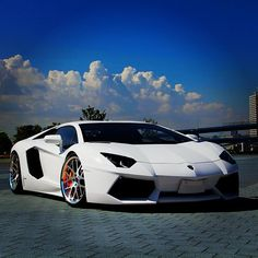 Exquisite White Lambo