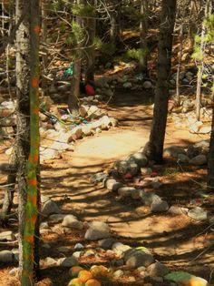 Utah's Hidden Secret: Enchanted Fairy Forest East of Kamas on Mirror Lake Scenic Byway