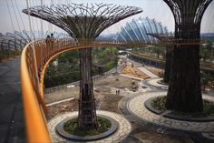 Architizer Blog » Singapore's Steel 'Supertrees' Rise over Marina Bay