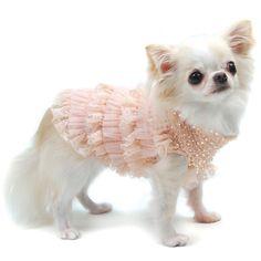 Indulge Me Oscar Newman Dog Sweater