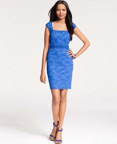 Ann Taylor - Cocktail Dresses: Party Dresses, Evening Gowns, Formal Dresses: ANN TAYLOR - Corded Lace Sheath Dress