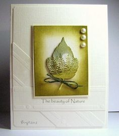 SC369 The beauty of Nature by Biggan - Cards and Paper Crafts at Splitcoaststampers