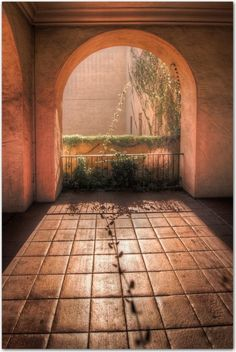 Vine and Arch, Balboa Park, San Diego, California    photo via keith