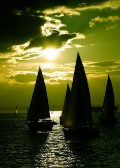 ..... silhouett, sky, sailboats, sailing, sunset, green, sea, sail away, sail boat