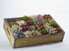 Dried local flowers in a rustic box   Sustainable Wedding Flowers   Green Bride GUide