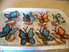 Butterfly cupcakes I made for my son's preschool class :)