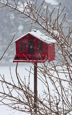 snow on top of the red birdhouse