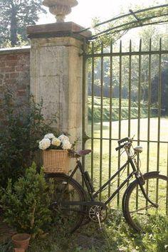 Selection of Bikes - http://dailyshoppingcart.com/bikes E x