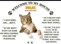 Rules of the house - please read