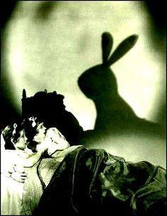 evil bunny shadow
