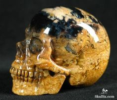 Fossil Agate carving of skull.