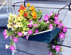 Boat Wall Planters