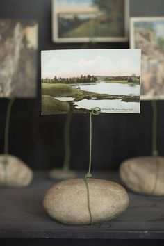 """You can create a whole gallery of rock frames in minutes by simply twisting the florist wire around the rock rightly and then making a quick """"curl"""" at the top to hold onto the picture."""