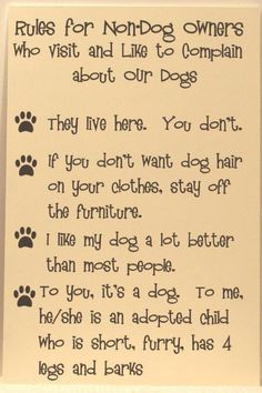 Dog lovers rules