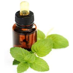Best Natural Cure For Vertigo