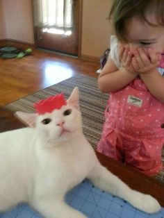 Agreeing to play princess. | 38 Pictures That Prove Cats Have Hearts Of Gold