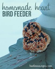 Make your very own homemade heart shaped bird feeder to feed the birds this February for Valentine's Day and National Bird Feeding Month!