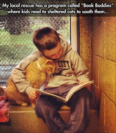 This should be done everywhere! - (also to encourage fostering and adoption) kids read to sheltered cats to make the cats feel better.