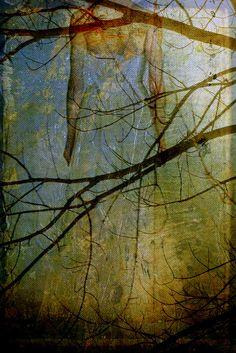 Mixed  media art © http://lindaplaisted.com
