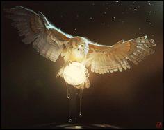 Owl who gets the moon every night from the river art by Alexandra Khitrova / Russia  http://www.behance.net/GaudiBuendia  http://gaudibuendia.deviantart.com/