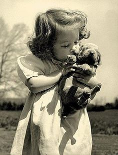 1940's puppy