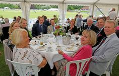 cricket 2014, fantast hospit, june 2014, arundel festiv, 1839 hospit