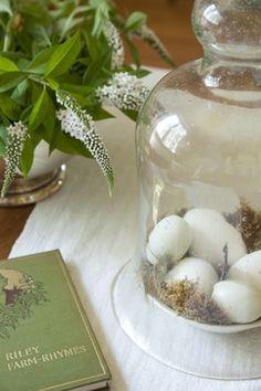 ~ eggs in cloche