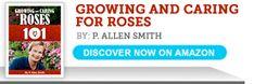 How to Root a Rose Bush | eHow.com