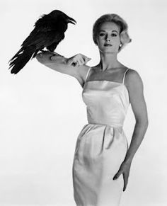 "Tippi Hedren with a feathered friend during the production of Alfred Hitchcock's ""The Birds""."