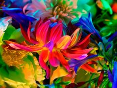 """TORKIL GUDNASON   """"Electric Blossom 363""""  2012  Hahnemuhle fine art photorag 308 gsm matt smooth paper  35 ¼ x 45 ½ in (89.5 x 115.6 cm) #color #art #photography #flower #floral #flora"""
