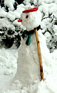 What did the snowman and his wife put over their baby's crib? A snowmobile! And more s#nowman #jokes at MirthinaBlog.com