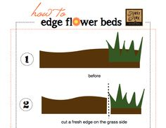 How to edge flower beds... like a pro! :: Hometalk