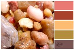 How to Make your own Color Palettes from Stitch11.com - Love this!!