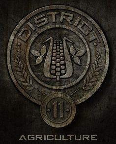 """Which """"Hunger Games"""" District Do You Actually Belong In. I GOT 11! COMMENT YOURS"""