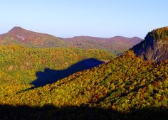 Shadow of the Bear appears in Nantahala National Forest during the last two weeks of October - near Cashiers NC.