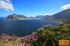 Hout Bay is called the Heart of the Cape. Halfway between Cape Town and  Cape Point. Named by Dutch explorers, literally translated means Wo...