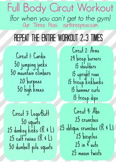 Full Body Circuit Workout - Our Three Peas