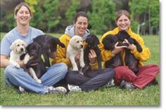 Lions club puppy training program