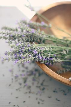 The scent of this summer celebration will be  lavender.