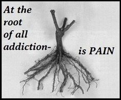Addiction.....I feel your pain...but only you can change your life. All I can do is hope you will someday want to change. Faith is my middle name..... quotes on addiction, alcohol addiction quotes, love addiction quotes, addiction recovery quotes, pain, inspir, alcohol recovery quotes, recoveri, the roots