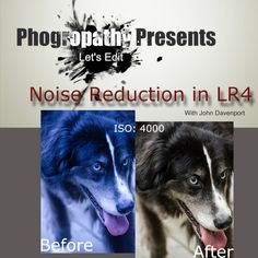 Noise Reduction in Lightroom
