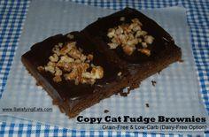 """COPY CAT LITTLE DEBBIE BROWNIES (GRAIN-FREE &LOW-CARB)"""