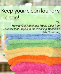 How to Get Rid of Mildew Smell in Laundry - Authentic Simplicity