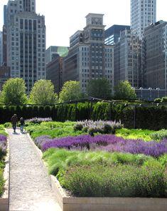 Our Little Acre: The Lurie Garden in Millennium Park - Chicago