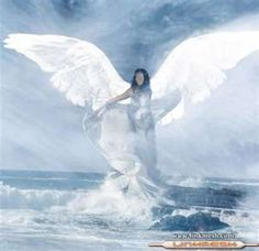 Image Search Results for angel
