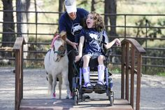 Tiny horses yield big benefits (Colorado Springs Gazette)