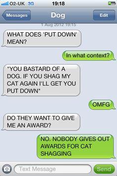 Batdog. Leave the cat alone.